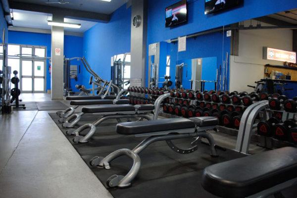 Palestra Silver Gym Pescara6